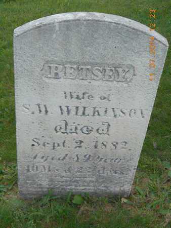WILKINSON, BETSEY - Calhoun County, Michigan | BETSEY WILKINSON - Michigan Gravestone Photos
