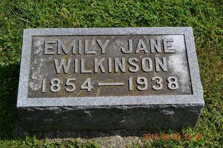 WILKINSON, EMILY JANE - Calhoun County, Michigan | EMILY JANE WILKINSON - Michigan Gravestone Photos