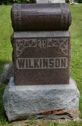 WILKINSON, FAMILY - Calhoun County, Michigan | FAMILY WILKINSON - Michigan Gravestone Photos