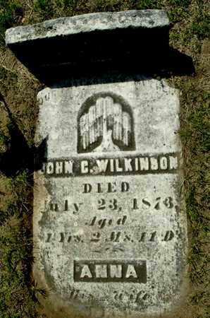 WILKINSON, JOHN C - Calhoun County, Michigan | JOHN C WILKINSON - Michigan Gravestone Photos