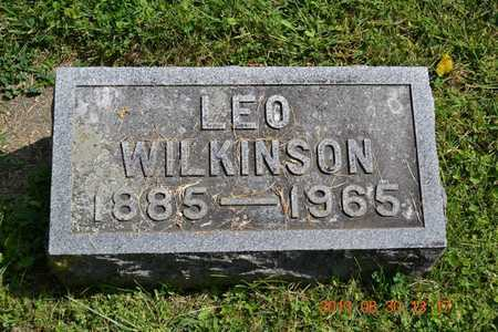 WILKINSON, LEO - Calhoun County, Michigan | LEO WILKINSON - Michigan Gravestone Photos