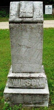WILSON, FAMILY MARKER - Calhoun County, Michigan | FAMILY MARKER WILSON - Michigan Gravestone Photos