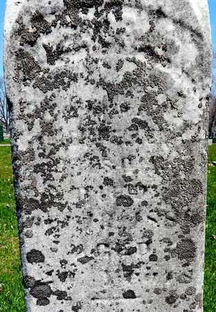 "WILSON, THEODORA ""DORA"" - Calhoun County, Michigan | THEODORA ""DORA"" WILSON - Michigan Gravestone Photos"