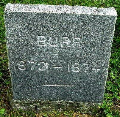 WOOD, BURR - Calhoun County, Michigan | BURR WOOD - Michigan Gravestone Photos