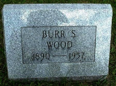 WOOD, BURR S - Calhoun County, Michigan | BURR S WOOD - Michigan Gravestone Photos