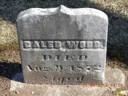 WOOD, CALEB - Calhoun County, Michigan | CALEB WOOD - Michigan Gravestone Photos