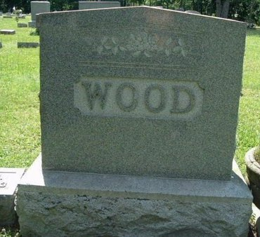 WOOD, LEO E - Calhoun County, Michigan | LEO E WOOD - Michigan Gravestone Photos