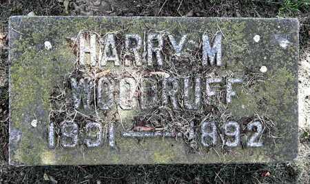 WOODRUFF, HARRY M - Calhoun County, Michigan | HARRY M WOODRUFF - Michigan Gravestone Photos