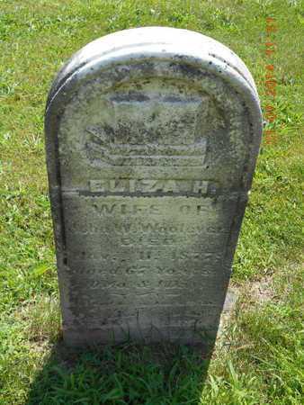 WOOLEVER, ELIZA H. - Calhoun County, Michigan   ELIZA H. WOOLEVER - Michigan Gravestone Photos