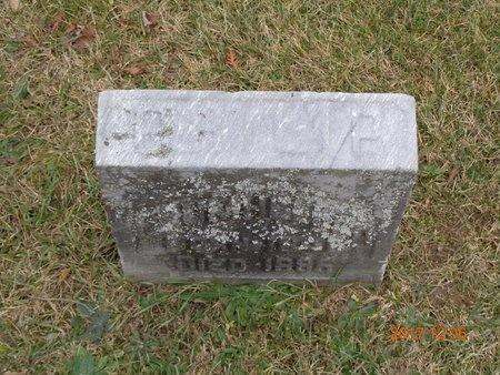 DRUMHELER, PHILIP - Clinton County, Michigan | PHILIP DRUMHELER - Michigan Gravestone Photos