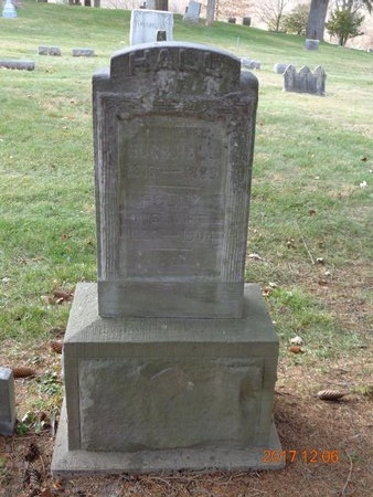 HALL, FAMILY - Clinton County, Michigan | FAMILY HALL - Michigan Gravestone Photos