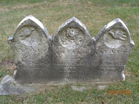 HAVILAND, INFANT - Clinton County, Michigan | INFANT HAVILAND - Michigan Gravestone Photos