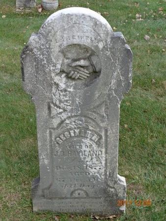 HAVILAND, REBEKAH M. - Clinton County, Michigan | REBEKAH M. HAVILAND - Michigan Gravestone Photos