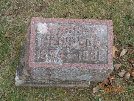 HERBISON, ISADORE - Clinton County, Michigan   ISADORE HERBISON - Michigan Gravestone Photos