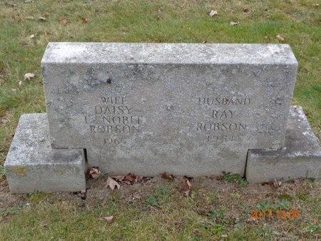 ROBSON, RAY - Clinton County, Michigan | RAY ROBSON - Michigan Gravestone Photos