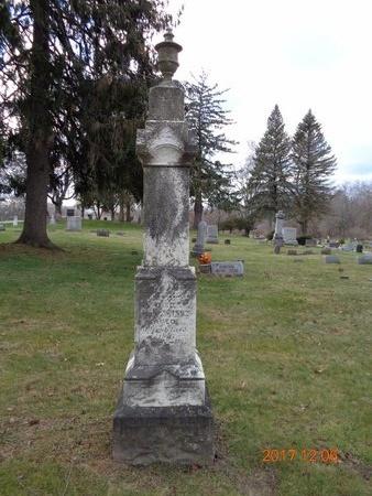SLEIGHT, FAMILY - Clinton County, Michigan | FAMILY SLEIGHT - Michigan Gravestone Photos