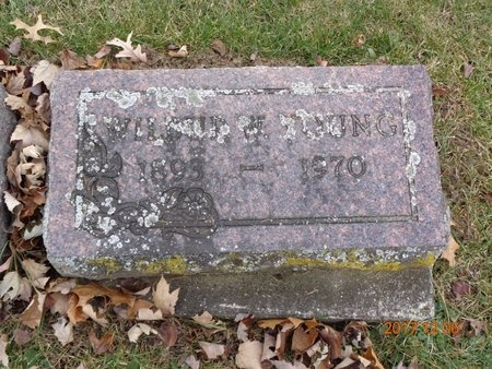 YOUNG, WILBUR W. - Clinton County, Michigan   WILBUR W. YOUNG - Michigan Gravestone Photos