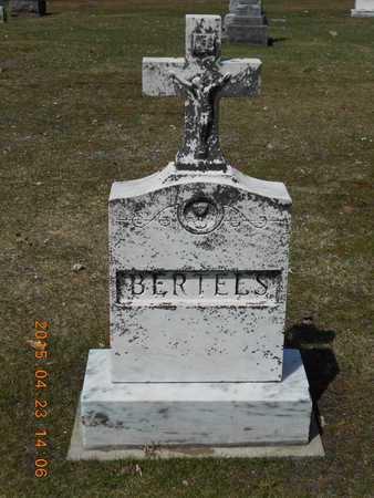 BERTELS, FAMILY - Delta County, Michigan | FAMILY BERTELS - Michigan Gravestone Photos