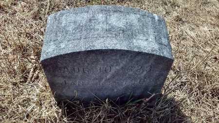 LATHROP, JR., AZEL - Delta County, Michigan | AZEL LATHROP, JR. - Michigan Gravestone Photos