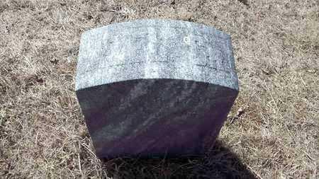 LATHROP, SR., AZEL - Delta County, Michigan | AZEL LATHROP, SR. - Michigan Gravestone Photos