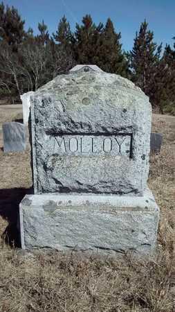 MOLLOY, FAMILY - Delta County, Michigan | FAMILY MOLLOY - Michigan Gravestone Photos