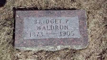 WALDRON, BRIDGET P. - Delta County, Michigan | BRIDGET P. WALDRON - Michigan Gravestone Photos