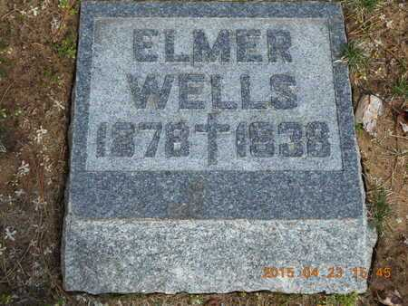 WELLS, ELMER - Delta County, Michigan | ELMER WELLS - Michigan Gravestone Photos