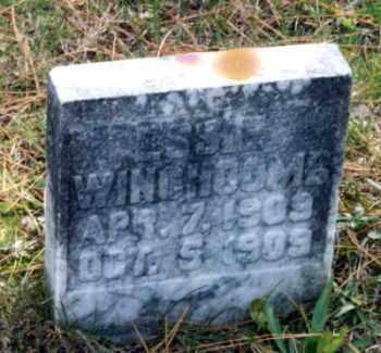 WINCHCOMB, ESSIE - Grand Traverse County, Michigan   ESSIE WINCHCOMB - Michigan Gravestone Photos