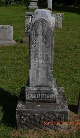 ALDRICH, NEWTON R. - Hillsdale County, Michigan | NEWTON R. ALDRICH - Michigan Gravestone Photos