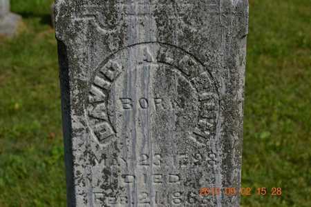 ALDRICH, DAVID - Hillsdale County, Michigan | DAVID ALDRICH - Michigan Gravestone Photos