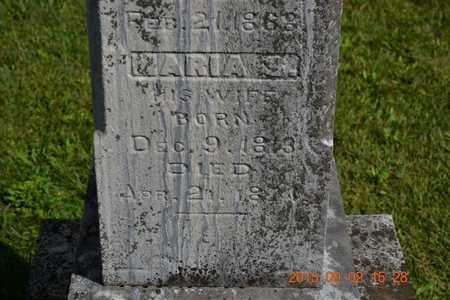 ALDRICH, MARIA S. - Hillsdale County, Michigan | MARIA S. ALDRICH - Michigan Gravestone Photos