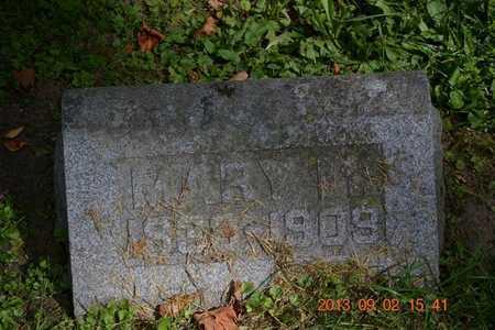BENEDICT, MARY M. - Hillsdale County, Michigan | MARY M. BENEDICT - Michigan Gravestone Photos