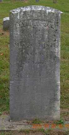 BREWER, DAVID - Hillsdale County, Michigan   DAVID BREWER - Michigan Gravestone Photos
