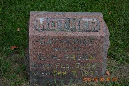 BROWN, CATHERINE - Hillsdale County, Michigan   CATHERINE BROWN - Michigan Gravestone Photos