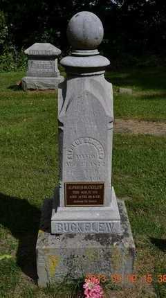 BUCKELEW, ALPHEUS - Hillsdale County, Michigan | ALPHEUS BUCKELEW - Michigan Gravestone Photos