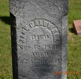 THOMPSON CALDWELL, JANE - Hillsdale County, Michigan | JANE THOMPSON CALDWELL - Michigan Gravestone Photos