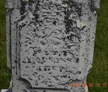 CARTER, WILLIAM H. - Hillsdale County, Michigan | WILLIAM H. CARTER - Michigan Gravestone Photos