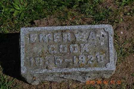 COOK, EMERY A. - Hillsdale County, Michigan | EMERY A. COOK - Michigan Gravestone Photos