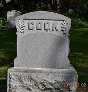 COOK, FAMILY - Hillsdale County, Michigan | FAMILY COOK - Michigan Gravestone Photos