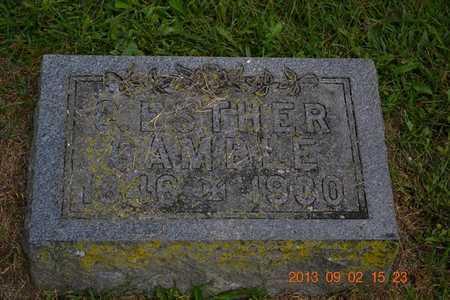 GAMBLE, C. ESTHER - Hillsdale County, Michigan | C. ESTHER GAMBLE - Michigan Gravestone Photos