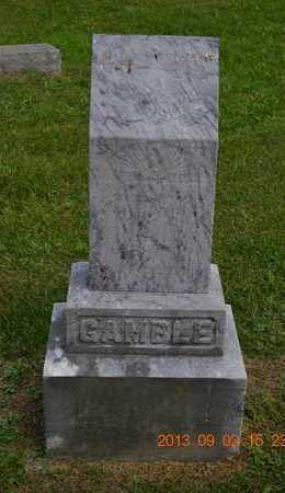 GAMBLE, ROBERT E. - Hillsdale County, Michigan | ROBERT E. GAMBLE - Michigan Gravestone Photos