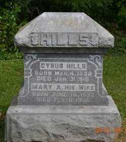 HILLS, MARY A. - Hillsdale County, Michigan | MARY A. HILLS - Michigan Gravestone Photos