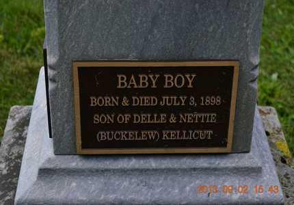 KELLICUT, BABY BOY - Hillsdale County, Michigan   BABY BOY KELLICUT - Michigan Gravestone Photos