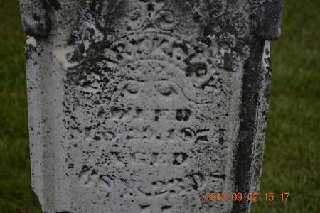 KELLY, MARY - Hillsdale County, Michigan | MARY KELLY - Michigan Gravestone Photos