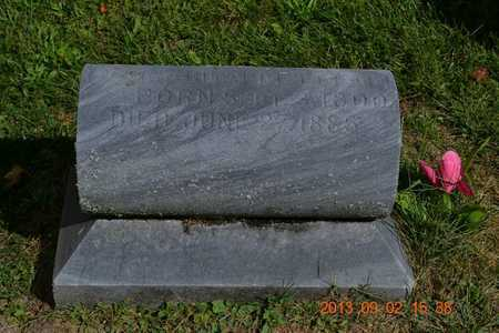 LEETE, MAHITABLE - Hillsdale County, Michigan | MAHITABLE LEETE - Michigan Gravestone Photos