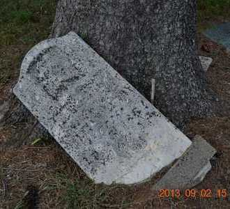 LUNDY, MARY ANN - Hillsdale County, Michigan | MARY ANN LUNDY - Michigan Gravestone Photos