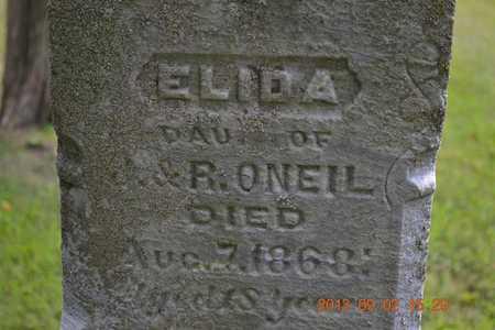 O'NEIL, ELIDA - Hillsdale County, Michigan | ELIDA O'NEIL - Michigan Gravestone Photos
