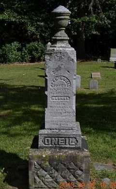 O'NEIL, JOHN - Hillsdale County, Michigan | JOHN O'NEIL - Michigan Gravestone Photos