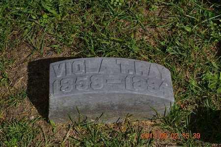 TRACY RAY, VIOLA - Hillsdale County, Michigan | VIOLA TRACY RAY - Michigan Gravestone Photos