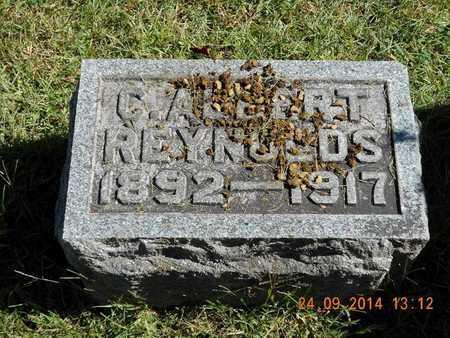 REYNOLDS, C. ALBERT - Hillsdale County, Michigan   C. ALBERT REYNOLDS - Michigan Gravestone Photos